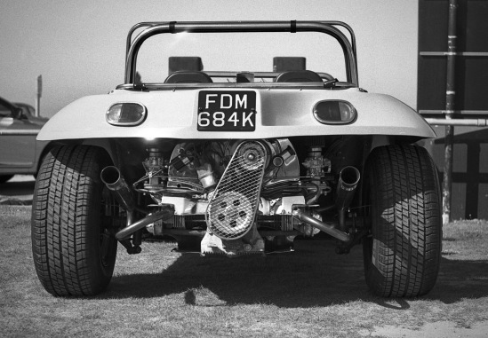 Cropped Buggy